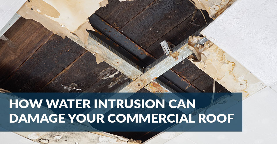 How Water Intrusion Can Damage Your Commercial Roof
